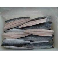 spanish Mackerel Fillets