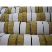 Chinese Boiled Bristle thumbnail image