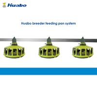 Auto Feeding System for Breeder Chicken Farm
