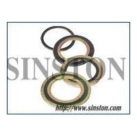 spiral wound gasket with inner and outer ring thumbnail image