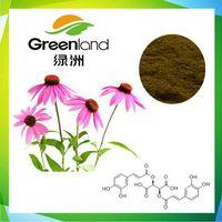 Echinacea Extract, Polyphenol, Chicoric Acid, Cichoric Acid, Echinacea Purpurea.