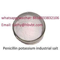 Pharmaceutical Grade 99% Penicillin G Potassium, CAS 113-98-4 Penicillin G