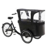 pedal cargo tricycle electric 3 wheel bicycle for children use thumbnail image
