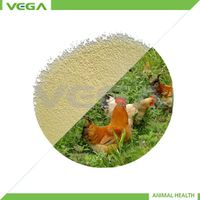 Coated Kitasamycin 50% for livestock,kitasamycin feed additives,kitasamycin feed grade china supplie