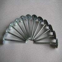 iron roofing nails with umbrella (factory direct)