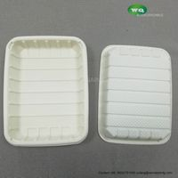 Corn Starch Biodegradable Disposable Food Tray thumbnail image