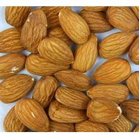 QUALITY ALMOND NUTS GRADE AAA FOR EXPORT thumbnail image