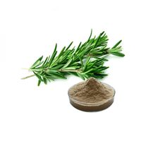 100% natural water soluble powder rosemary extract