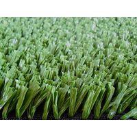Soccer Grass TG50495