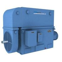 YRKK series large-scale high voltage wound rotor three-phase asynchronous electric  motor (6KV 10KV)