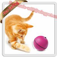 Fleeing Cat Ball