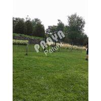 garden trellis,fence,arbor thumbnail image