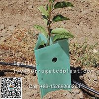 Tree protector,tree shelter,plant protector thumbnail image