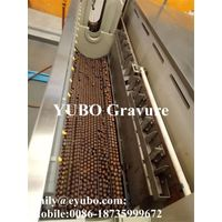 Copper plating tank for gravure cylinder printing flexible packaging