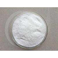 SGS Manufacturer Supply Chitosan