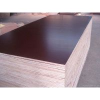 Paper Film Faced Plywood Construction Plywood