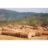 Balau round log thumbnail image