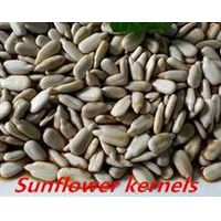 Chinese Wholesale Sunflower Seeds thumbnail image