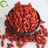 Good Quality Factory Supply Dried Zhongning Wolfberry