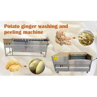 Brush Potato Ginger Washing And Peeling Machine