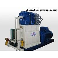 natural gas compressor