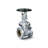 Stainless Steel gate valve for power transformer