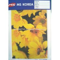 MS-2700 Reflective Digital print film