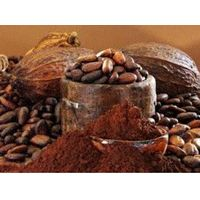Good quality and suitable price cocoa powder