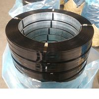 Packaging Strapping steel industrial packaging material thumbnail image