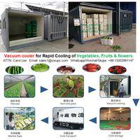 ICEUPS Vacuum Precooling Machine for Strawberries Freshness