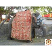 Elephant On Hire