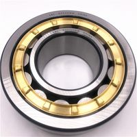 Double Row Cylindrical Roller Bearing NU2204E NU2205E with High Load