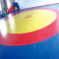 Wrestling Mats Factory Price Wrestling cover