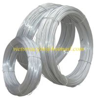 high quality hot dipped/electro galvanized ss/iron wire