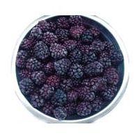 IQF blackberries, frozen blackberries thumbnail image