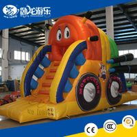 Inflatable dry Slide, Inflatable Commercial Slide
