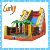 2013 high qualiy hot-selling inflatable slide bouncy slides thumbnail image