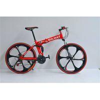 high grade folding bike with Magnesium alloy wheels
