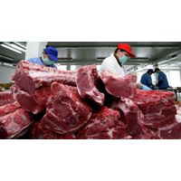 Frozen Beef Meat/ Buffalo Meat
