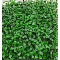 New fresh PE 3-5 years warranty artificial boxwood hedge fence panel for garden
