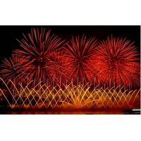 fireworks show /fireworks display/pyrotechnics/ thumbnail image