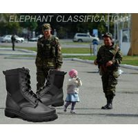 Selling ELEPHANT CLASSIFICATION POLICE & MILITARY FOOTWEAR SHOES thumbnail image