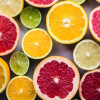 Citrus Juice Powder