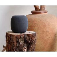 Smart Speaker Small Art Speaker AI Speaker WiFi Bluetooth Audio Dana Joint V