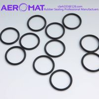 Hot Sale EPDM NBR ACM VMQ FKM FVMQ HNBR Rubber Sealing O Ring thumbnail image