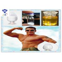 Injectable Anabolic Steroids Testosterone Enanthate 99% CAS 315-37-7 for Muscle Building thumbnail image
