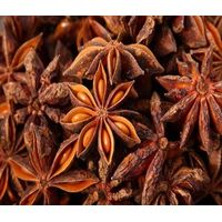 Wholesale high quality natural star anise