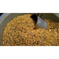 Chicken Feed thumbnail image
