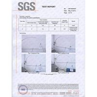 SGS test report for flag pole made of fiberglass thumbnail image
