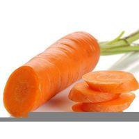 beta-carotene 20% CWS 30% oil